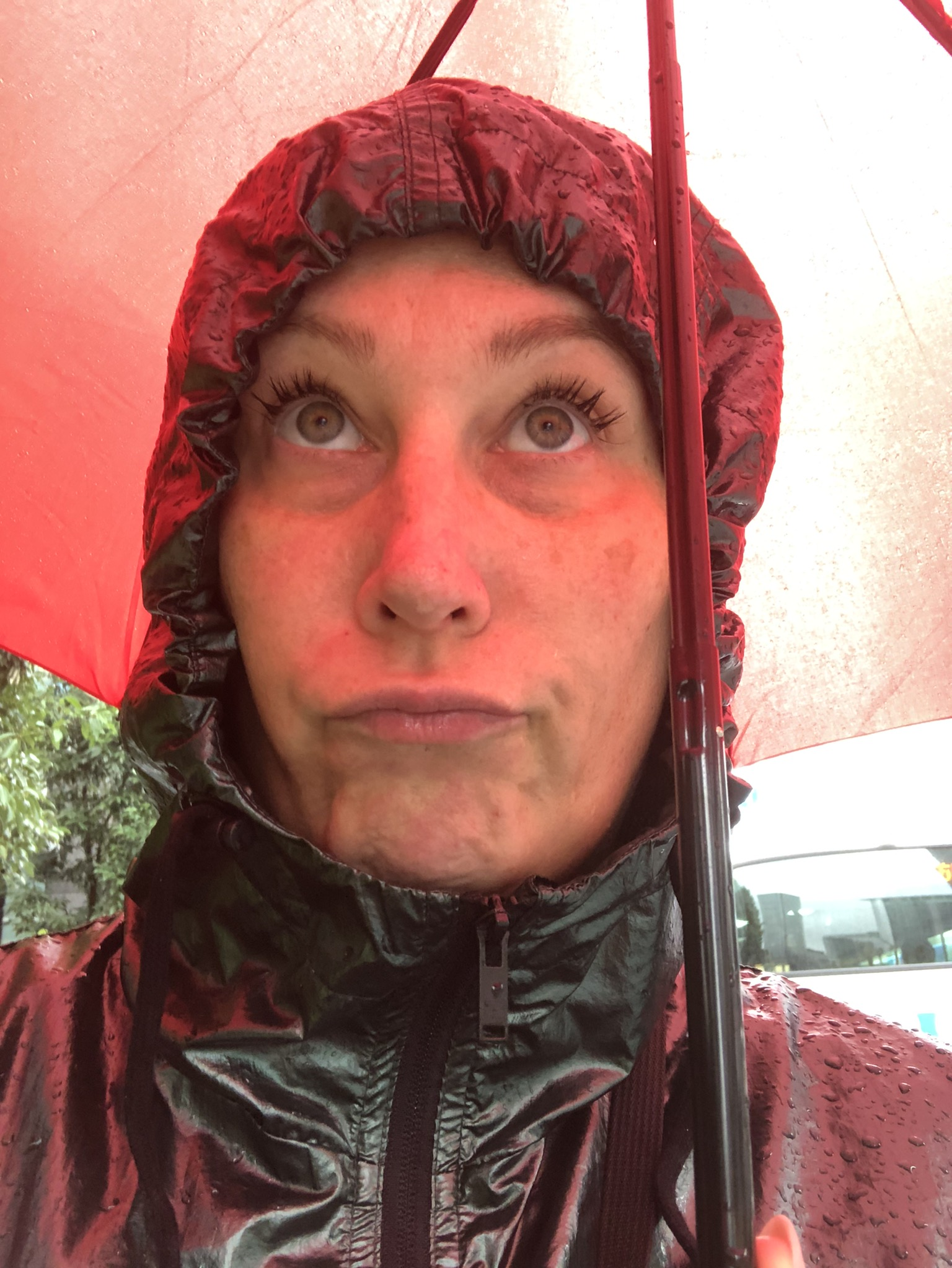 Regen-Ich